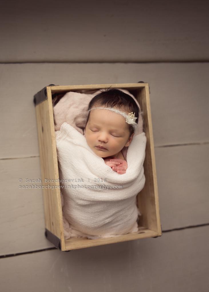 Newborn Photographer in Houston | Sarah Borchgrevink Photography