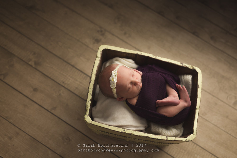 Tomball TX Baby & Family Photography