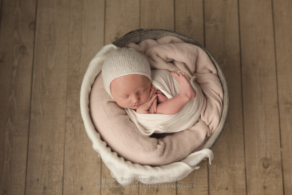 Baby Photographer Houston TX | Sarah Borchgrevink