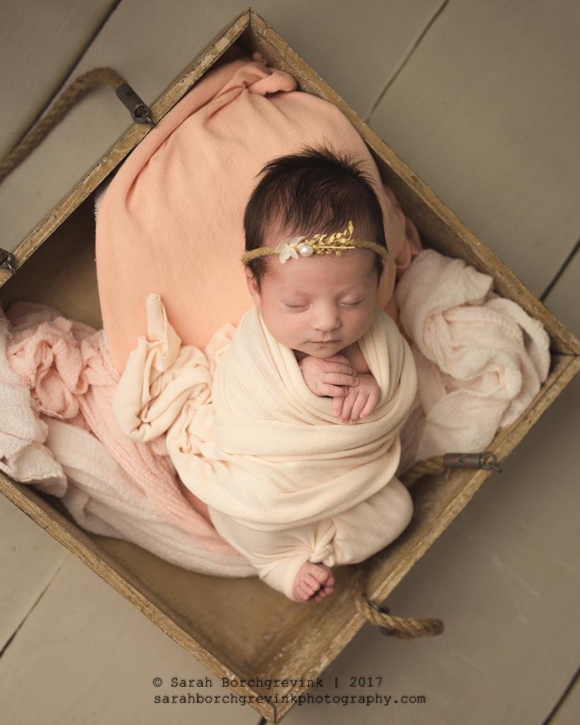 Spring Newborn Photographer | Houston Baby Portraits