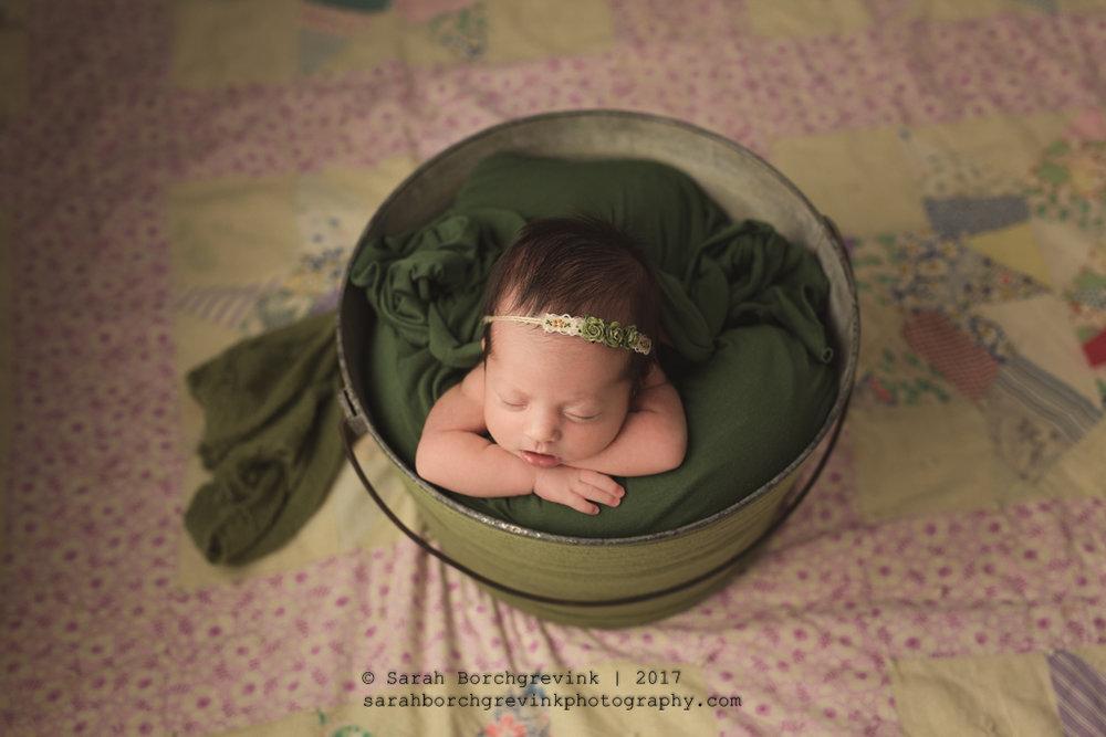 Houston TX Newborn & Family Photographer