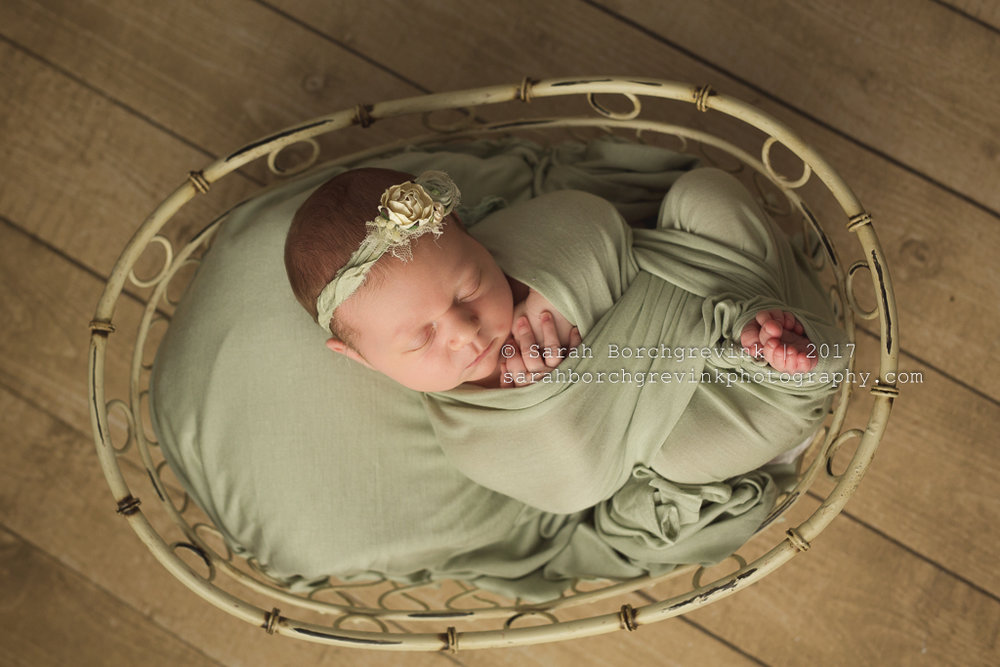 Houston TX Family & Baby Portrait Photography