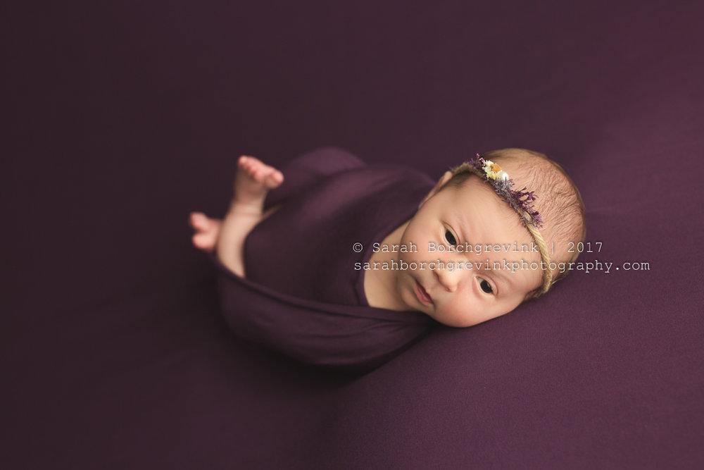 Purple Newborn Photography Colors | Sarah Borchgrevink Photography