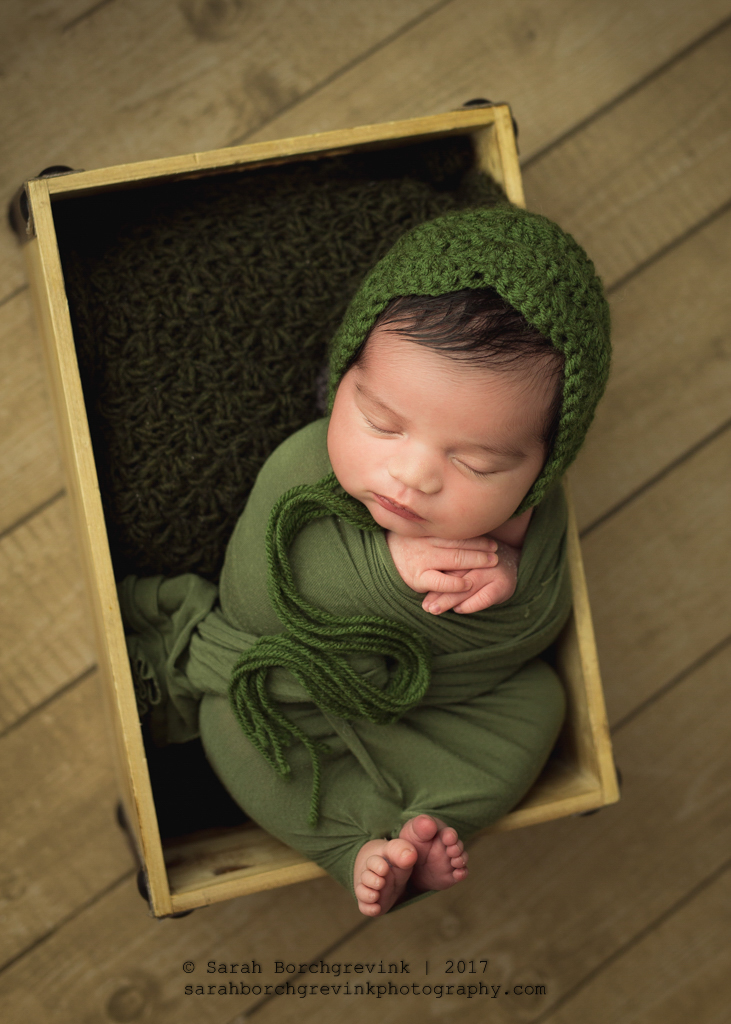 Spring & The Woodlands TX Newborn Photographer