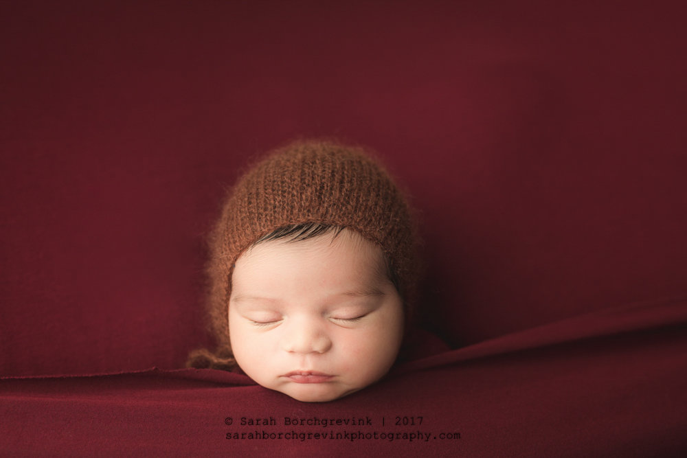 Newborn Photographers Rice Village, River Oaks and Montrose