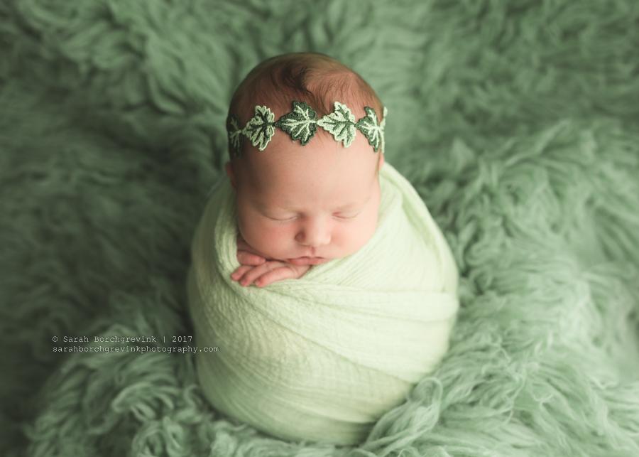 Katy Texas Newborn Photographer   Sarah Borchgrevink