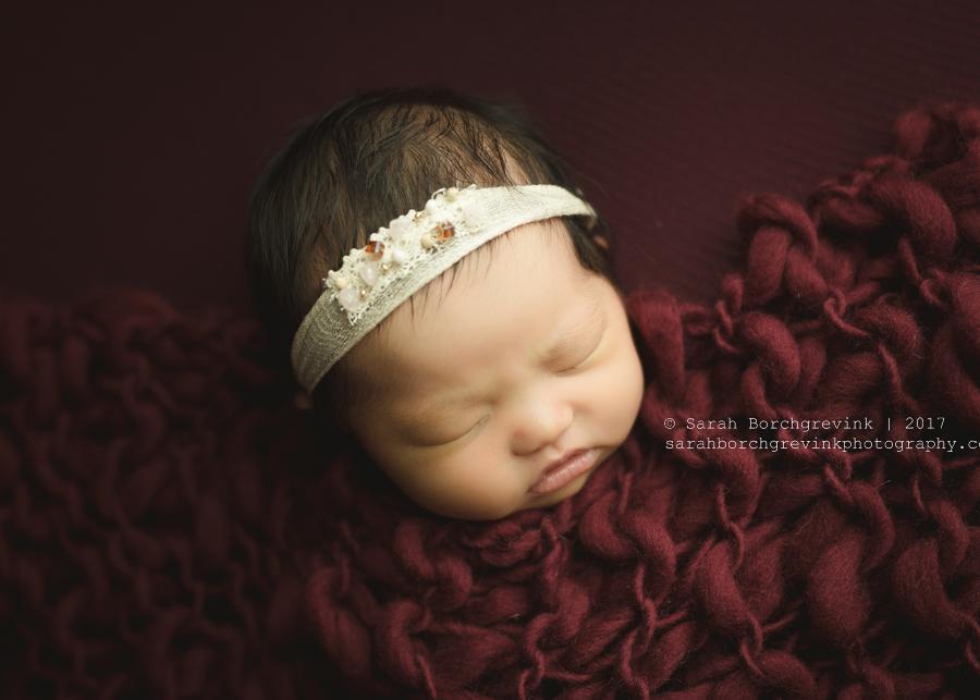 Baby Photography Houston Texas   Sarah Borchgrevink