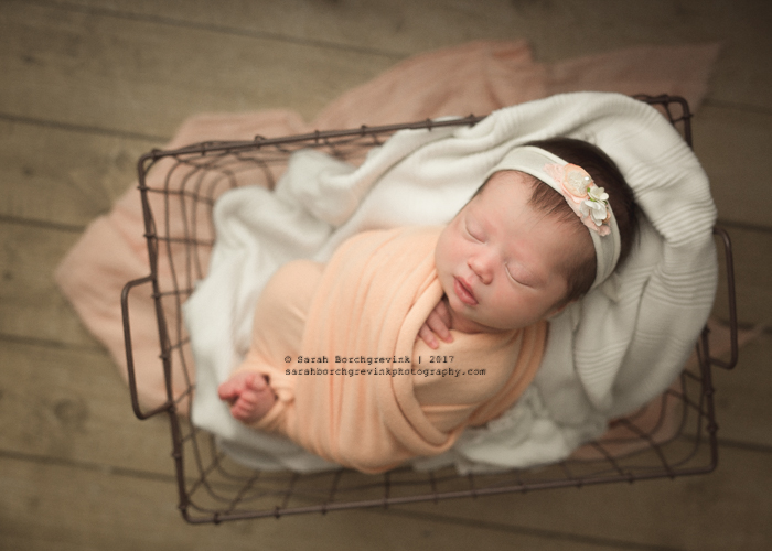 Houston TX Newborn Studio