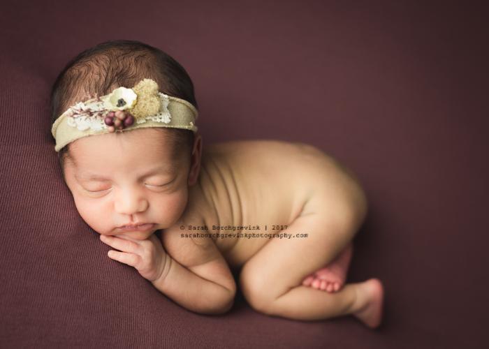 Sarah Borchgrevink Photography: Best Houston Newborn Portraits