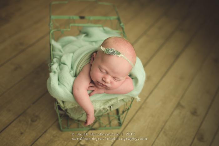 Meyerland Newborn & Family Photography