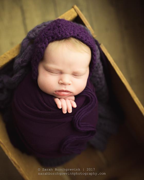 Houston TX Newborn Photgrapher