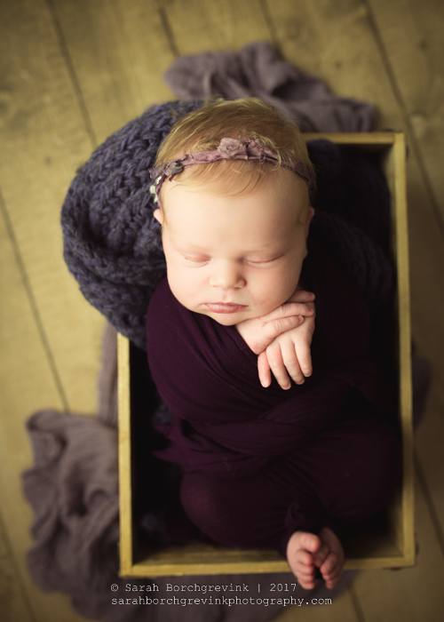 Sarah Borchgrevink: Houston's Best Newborn Photographer