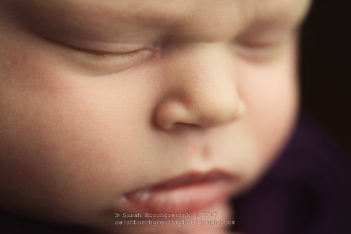 Houston Maternity & Newborn Portraits