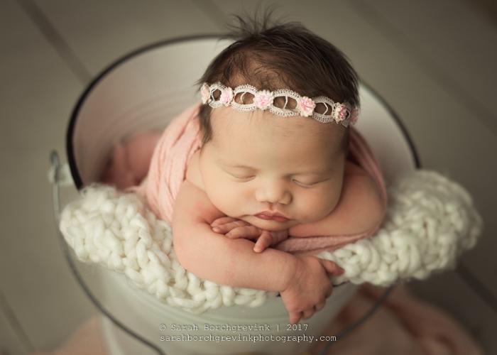 Houston TX Newborn Photographer   Sarah Borchgrevink