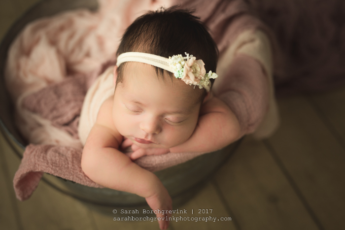 Sarah Borchgrevink Photography: Houston Photographer