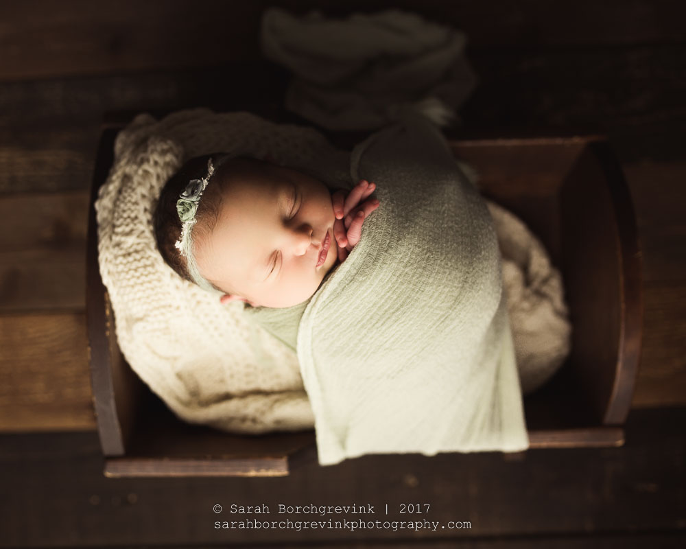 newborn photography sugar land tx