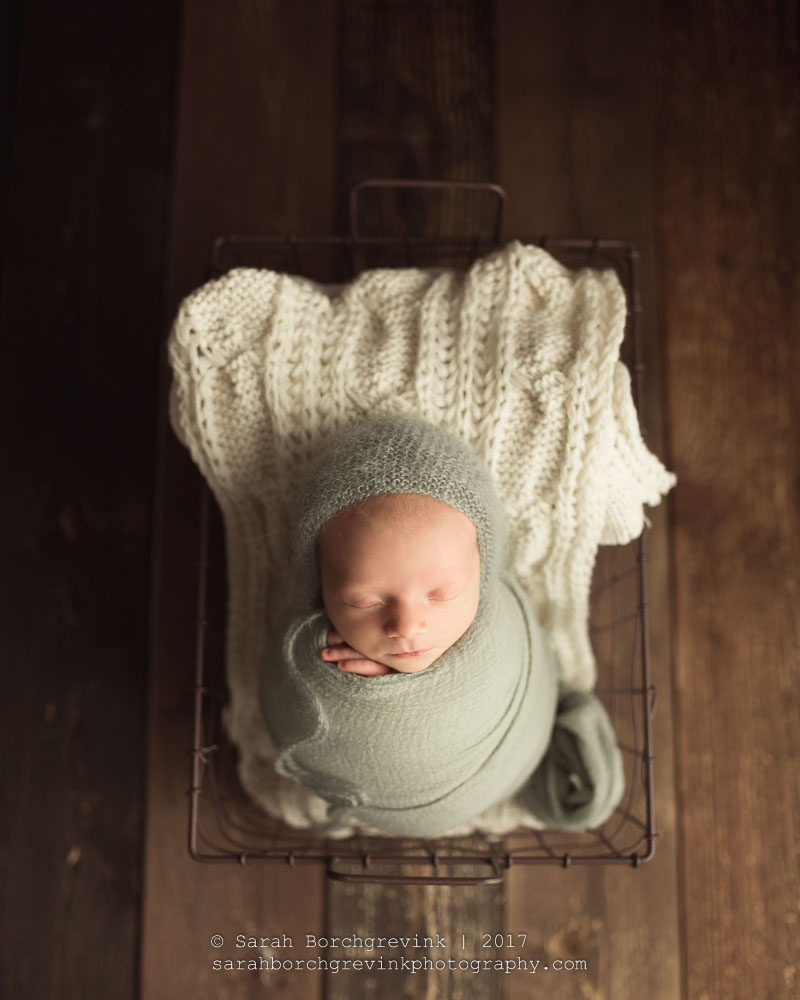 sugar land tx newborn photographer