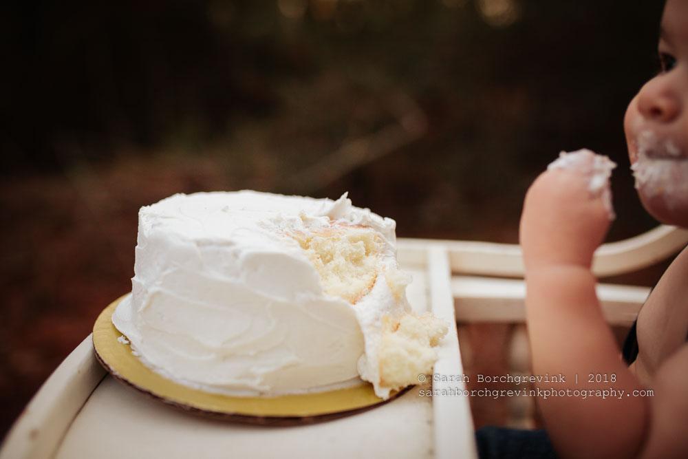 houston baby cake smash