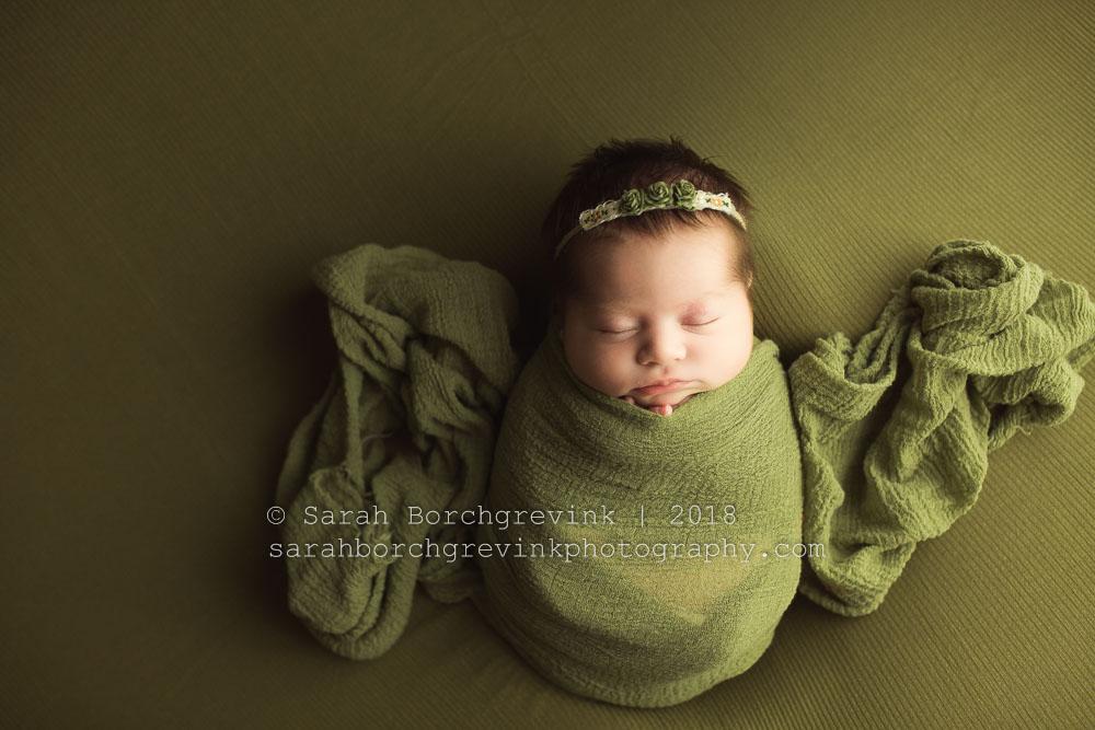 houston's best newborn photographer
