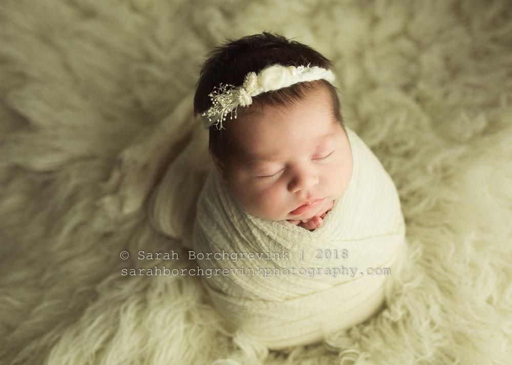 houston newborn photographer | sarah borchgrevink