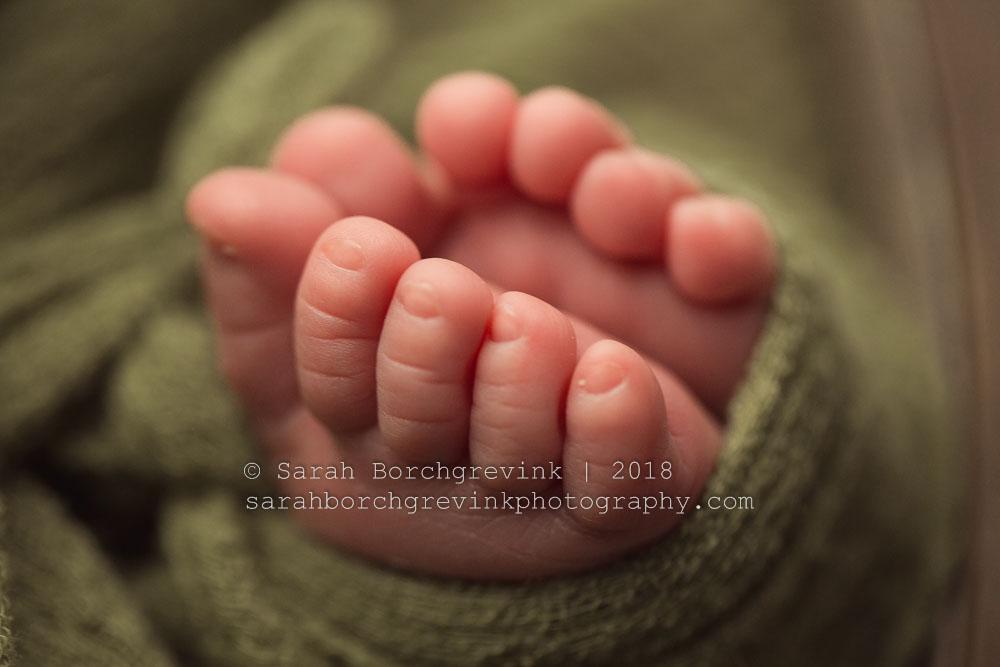 maternity photography katy tx
