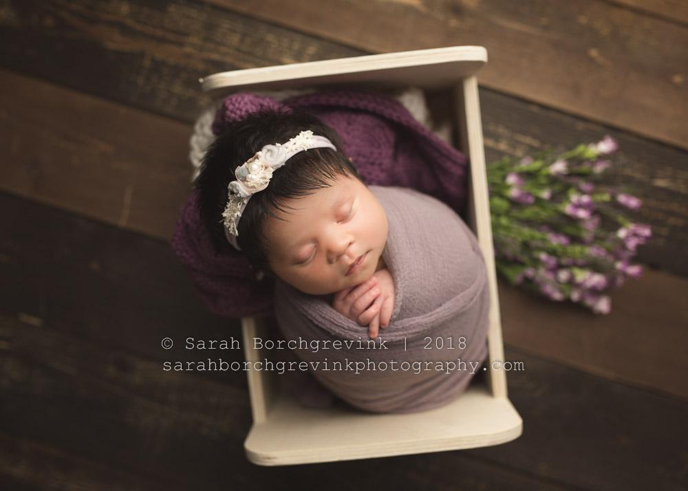 katy tx newborn photography