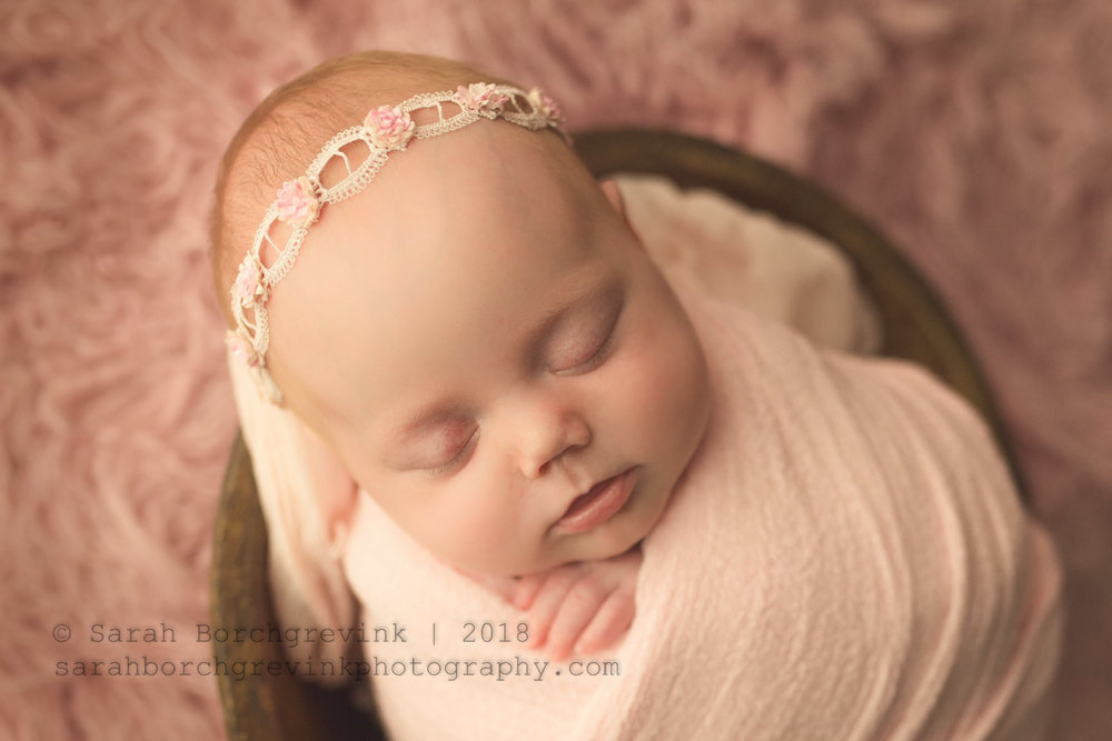 houston texas newborn studio