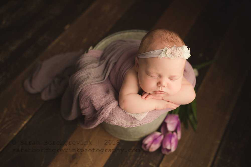 newborn photography by sarah borchgrevink