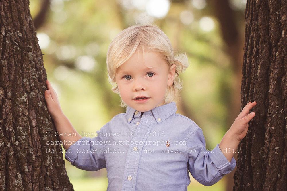 family and baby photographer houston texas