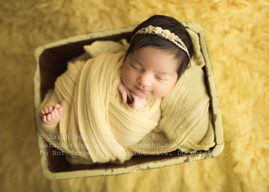 yellow during newborn girl session