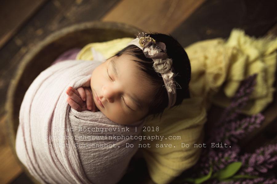 yellow and lavender purple newborn color scheme