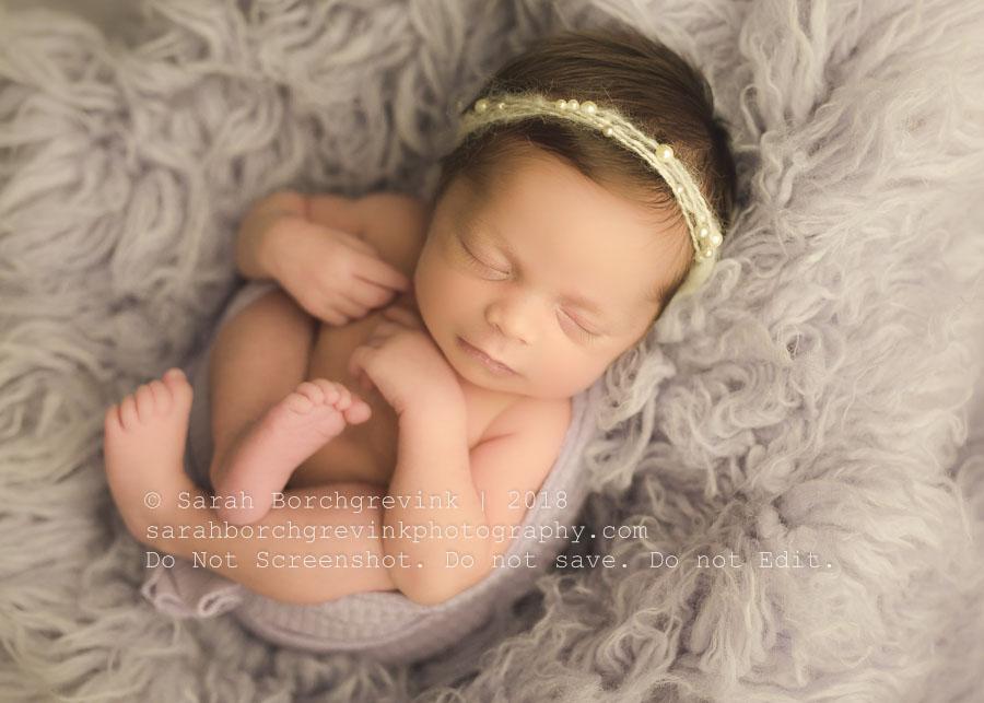 best newborn photography houston