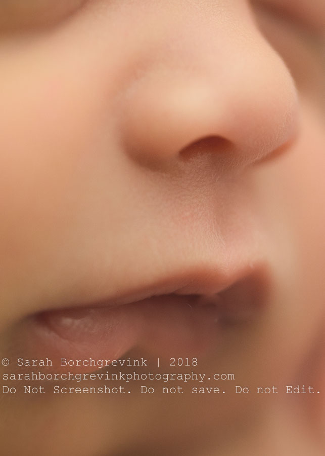 newborn girl photo shoot