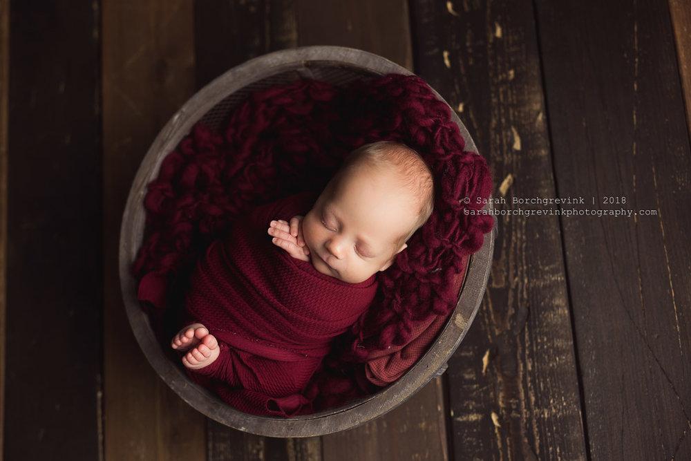 best newborn photography in houston