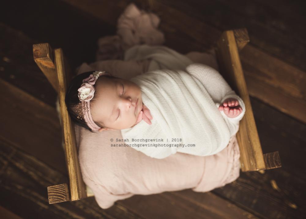 2 week old newborn pictures