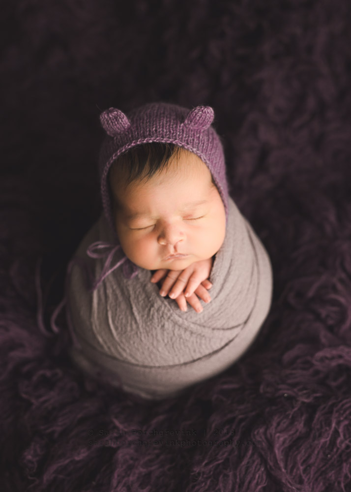 purple bear hat newborn girl session