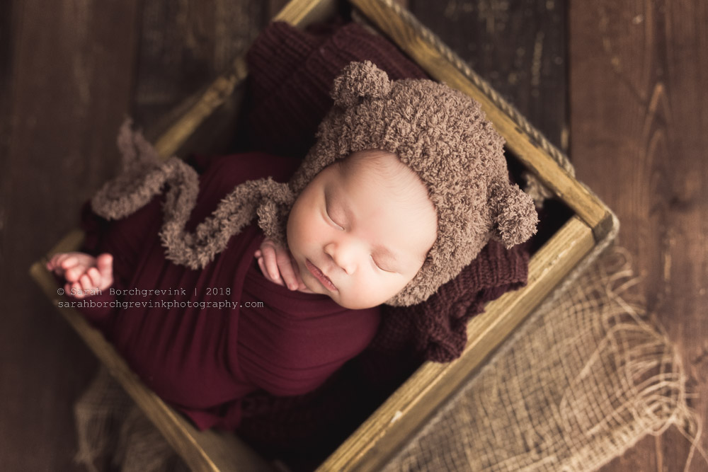wrapped newborn mini session