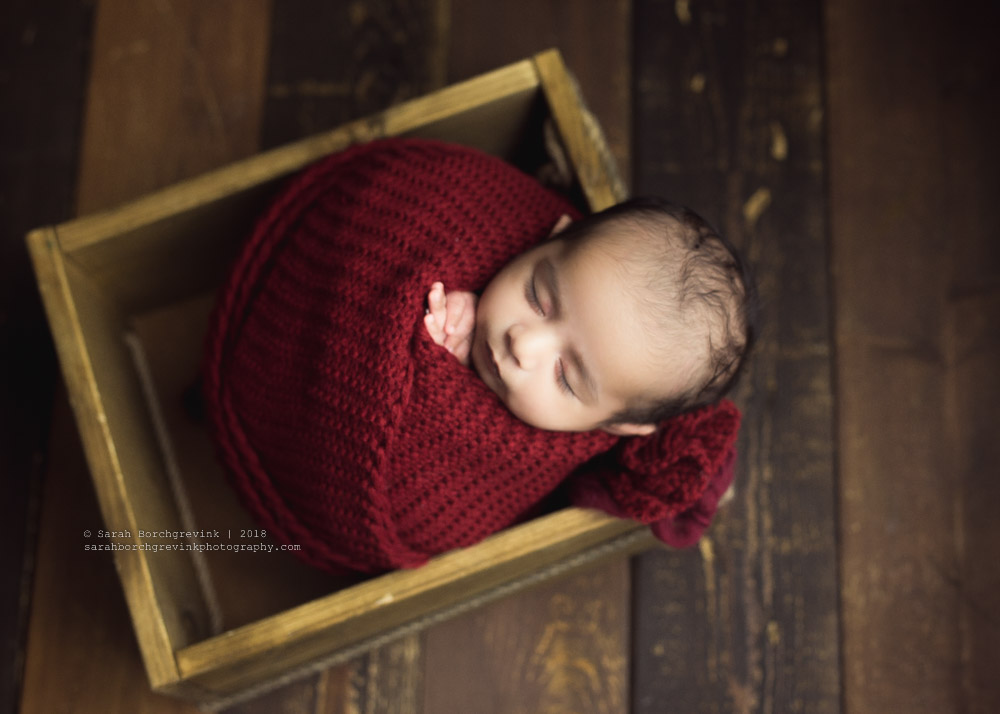 7 week old newborn boy photoshoot