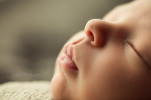 Newborn Photography Houston Price