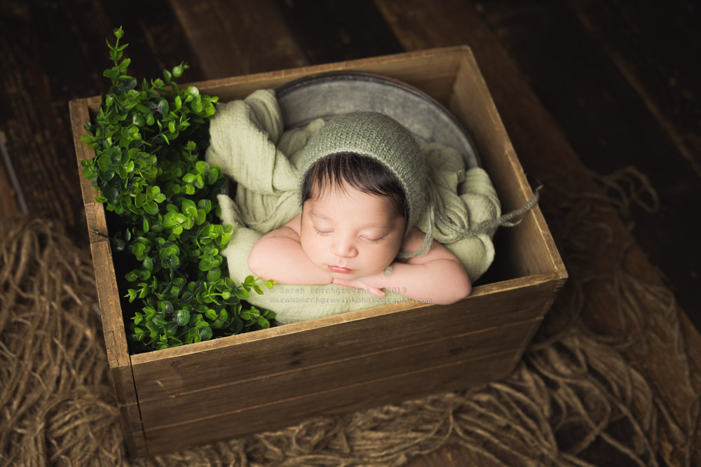 spring has sprung newborn photography