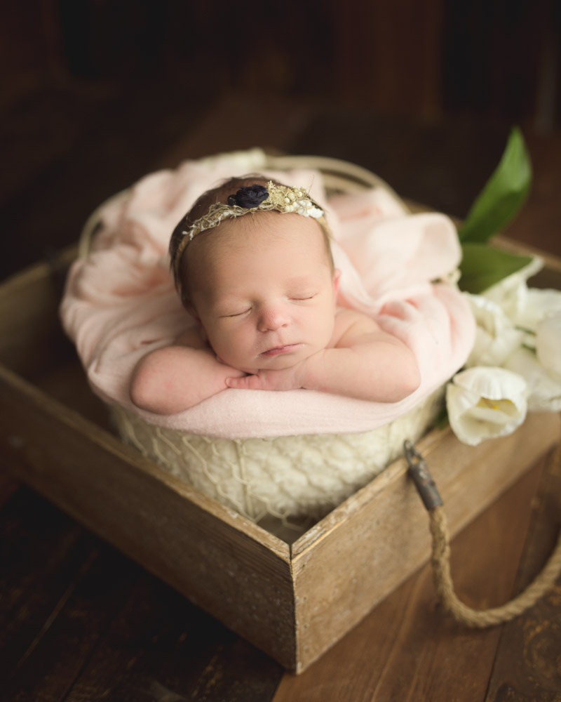 Houston newborn photography spring colors