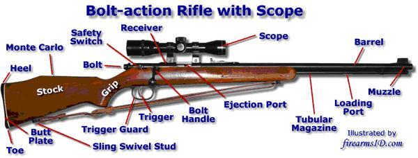 firearms6.JPG