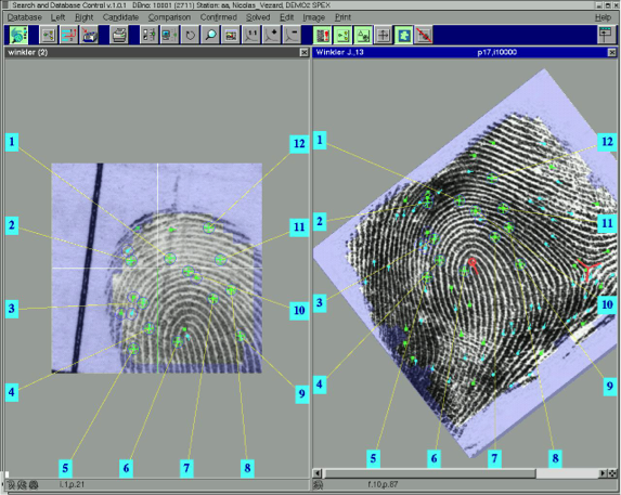 A Fingerprint Entered Into AFISu2014the U201cmarkersu201d Are Highlighted In Green In  This