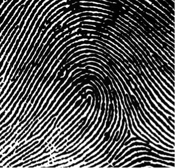 prints 2.png  sc 1 st  Macku0027s Criminal Law & Fingerprints-Science u2014 MCL