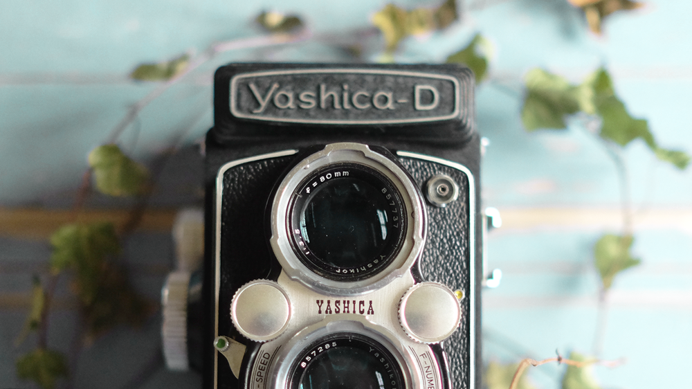 Shooting With Film Camera