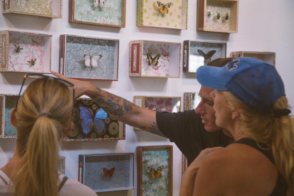Jonathan Seagul Butterfly Art