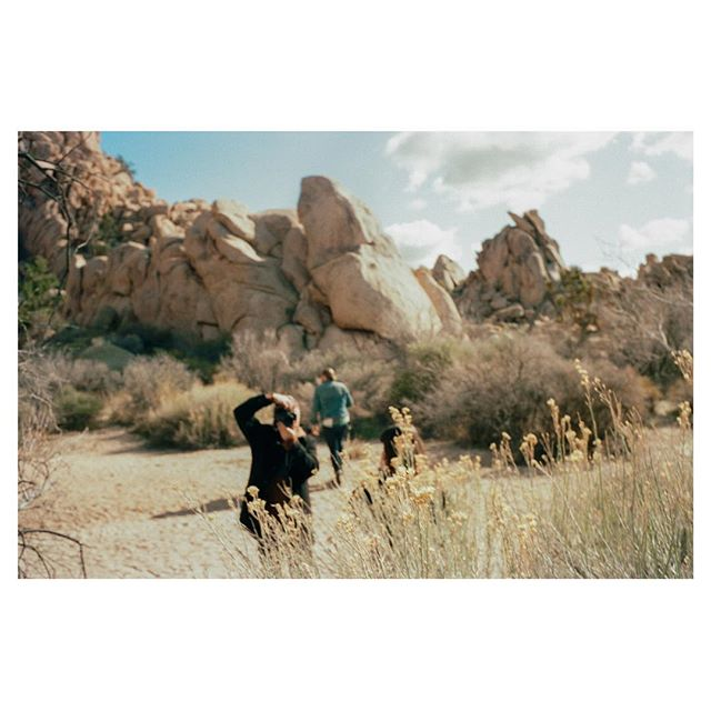 Focused. - #JoshuaTree #Leica #2018