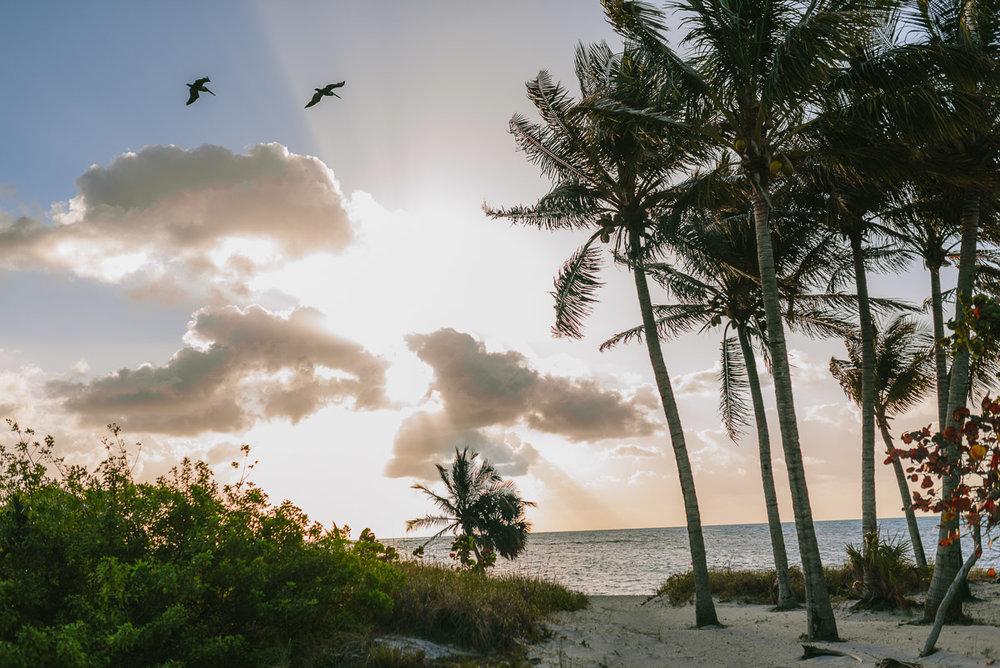 Eduardo_Allanegui_Photography_Miami_002.jpg