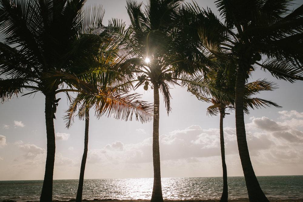 Eduardo_Allanegui_Photography_Miami_131.jpg