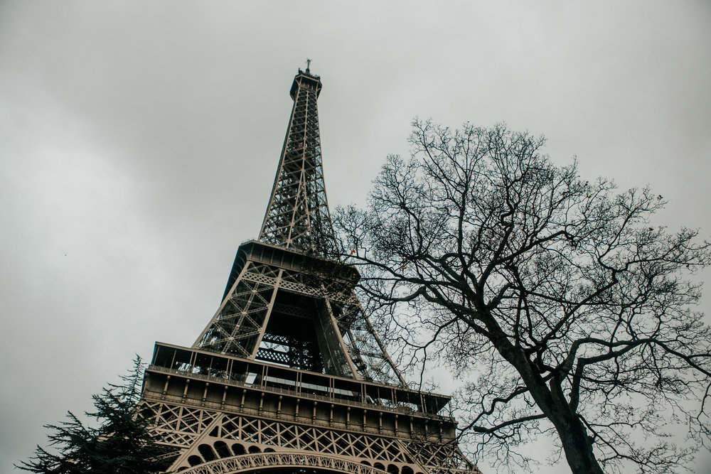The Eiffel Tower | Paris, France | December 7th, 2018 | (Photo by David A. Smith / DSmithScenes)